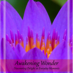 Awakening Wonder eBook (free & I'm in it)