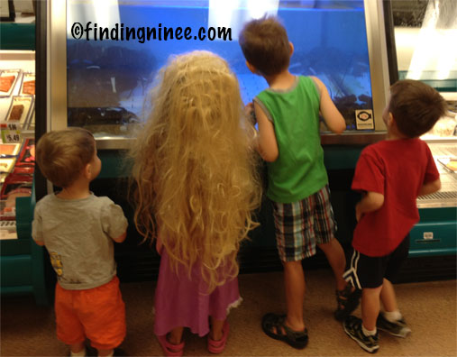 Four Siblings Looking at a Lobster Tank - Sister Wearing her Rapunzel Costume.
