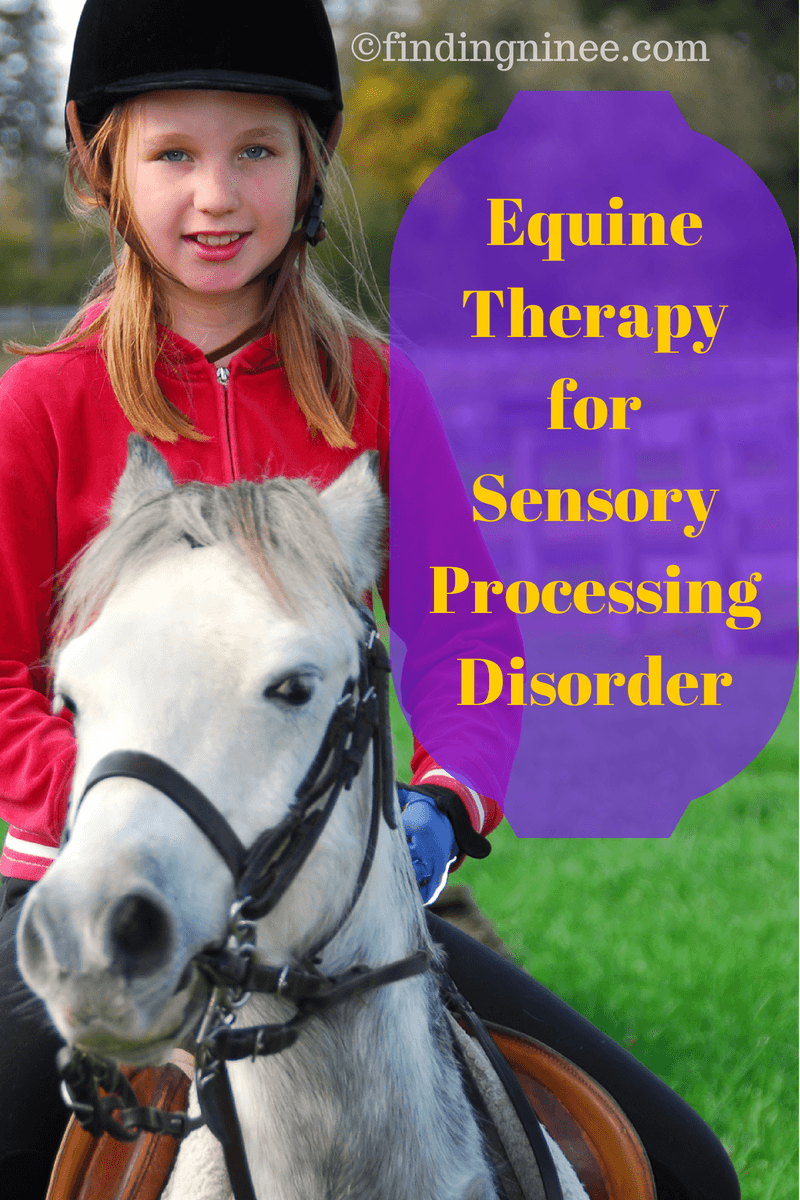 Equine Therapy For Sensory Processing Disorder Finding Ninee
