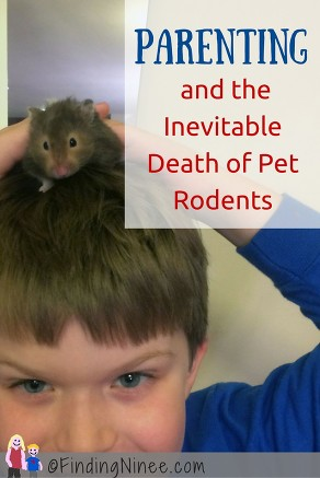Remembering Childhood through Parenting and the Inevitable Death of Rodents-findingninee.com