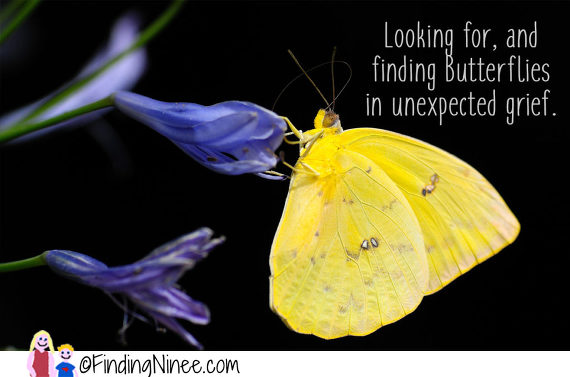 Unexpected Grief and Watergun and Butterfly Magic